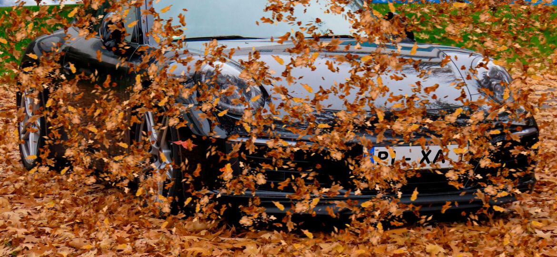 revisión coche otoño
